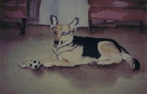 pet-portrait3
