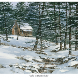 Cabin in the Hemlocks