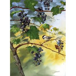 A Grape Morning